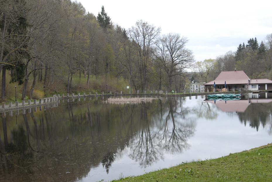 L'étang noir